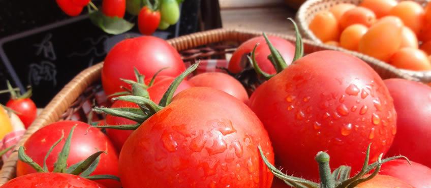 Beneficios del tomate para la salud