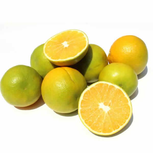 Naranja comun organica