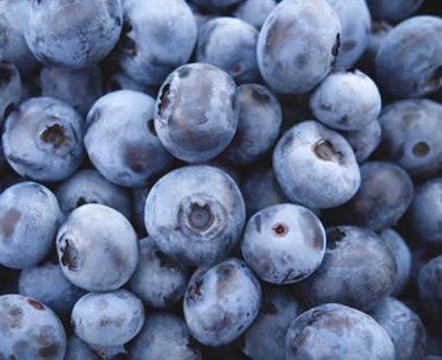 Arandanos azules organicos bandeja 125g