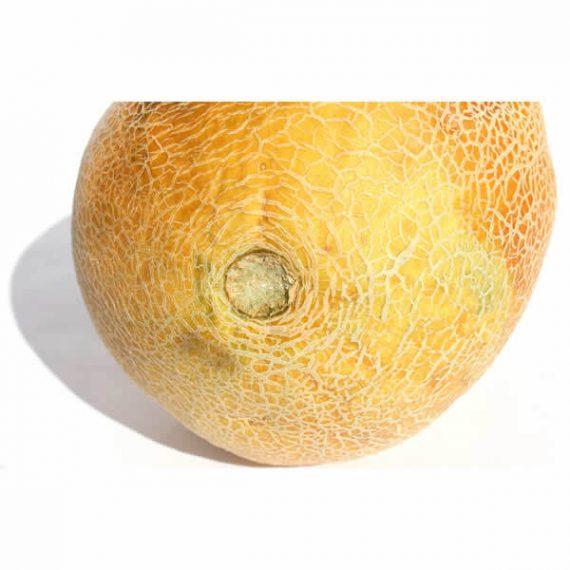 melón orgánico