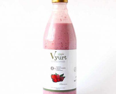 Yogourt vegano a base de leche de coco